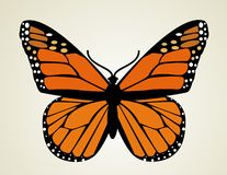 Butterfly. Vector illustration Stock Photos