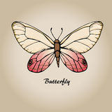 Butterfly 7 Royalty Free Stock Image