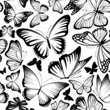 Butterfly vector pattern Royalty Free Stock Photos