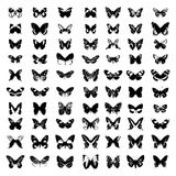 Butterfly Vector Silhouette. Royalty Free Stock Photography