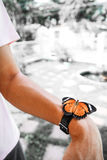 Butterfly watch. Is natural watch which cannot see the time royalty free stock photos
