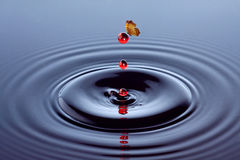Butterfly and water drop Royalty Free Stock Photography