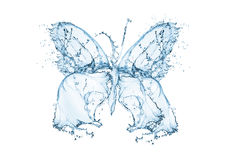 Butterfly water splash Stock Photos