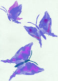 Butterfly watercolor Royalty Free Stock Image