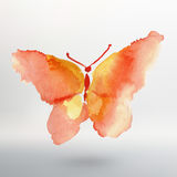 Butterfly watercolor drawing. Vector art  Royalty Free Stock Image