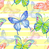 Butterfly. Watercolor seamless pattern. Royalty Free Stock Photos