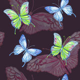 Butterfly. Watercolor seamless pattern. Stock Image