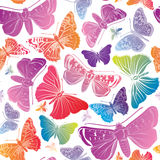 Butterfly watercolor seamless pattern. Summer background. Royalty Free Stock Image