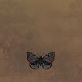 Butterfly in watercolor at vintage background Stock Photo