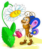 Butterfly watering the flower, cartoon insect Royalty Free Stock Photos