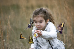 Butterfly whisperer Royalty Free Stock Photography
