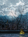 Butterfly on window by autumn in rain. On background tree and autumn sheet royalty free stock photos