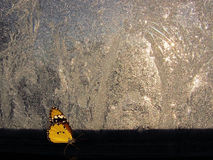 Butterfly beside window by winter icy pattern. Butterfly on background window with winter icy pattern stock images