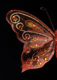 Butterfly wing full shot Royalty Free Stock Photo
