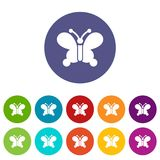 Butterfly wing patterns icon, simple style Stock Photography