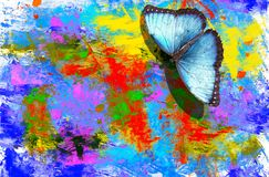 Free Butterfly With Abstract Watercolors Royalty Free Stock Photo - 102104975