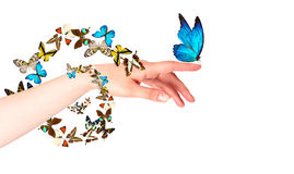 Butterfly on woman's hand. In motion Stock Photos