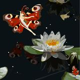 Butterfly. Women elf water lily flower Royalty Free Stock Image