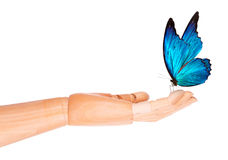 Butterfly on wooden hand. In motion Stock Image