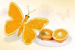 Butterfly, Yellow, Orange Stock Photos