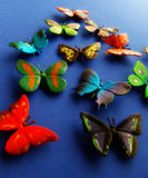 Butterfly5. Toy butterflies on blue background Stock Photos