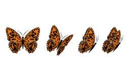butterfly7 Стоковое Изображение