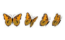 Butterfly9 Stock Images