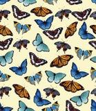 Butterflyes акварели на белой предпосылке es Стоковые Фотографии RF