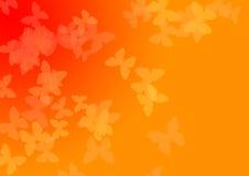 Butterflyes translúcido Ilustração Royalty Free