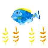 Butterflyfishes Illustration Libre de Droits