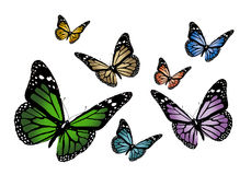 Butterflys illustration de vecteur