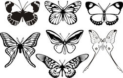 Butterflys Photo stock