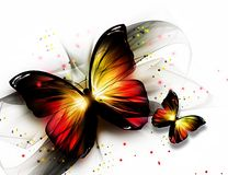 Free Butterflys Stock Photography - 20912152