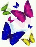 Butterflys Imagens de Stock Royalty Free