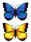 Butterflys bleus et jaunes Images libres de droits