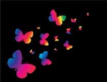 Butterflys em um fundo preto Imagens de Stock Royalty Free