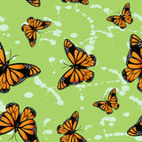 Butterflys on green background. Royalty Free Stock Photo