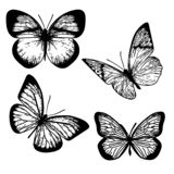 Butterflys ha messo 1 royalty illustrazione gratis