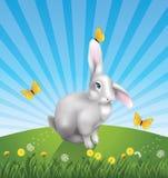 butterfys兔子 图库摄影