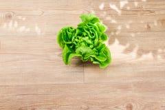 Butterhead grönsallat arkivfoton