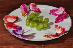Butterly στο άσπρο πιάτο στοκ εικόνες με δικαίωμα ελεύθερης χρήσης