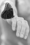 Butterly, das auf der Hand einer Frau sitzt Stockbilder