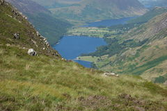 Buttermere and Crummock Water Royalty Free Stock Photo