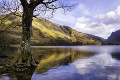 Buttermere område för sjö, sjö, England Royaltyfria Foton