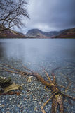 Buttermere rotar Royaltyfria Foton