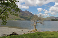 Buttermere, view of lake and fells Stock Images