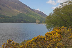 Buttermere, view of lake and fells Royalty Free Stock Image