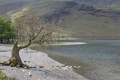 Buttermere, view of lake and fells Royalty Free Stock Photography