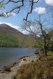 Buttermere, view of lake and fells Royalty Free Stock Photo