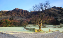 Buttermere Winter scene. With frost on the grass royalty free stock image